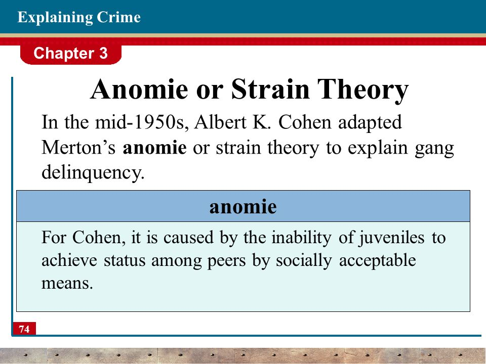 theory of criminology essay Criminology theory assists us in understanding why people commit crimes and enables us to attempt various courses of action in an effort to achieve that goal.
