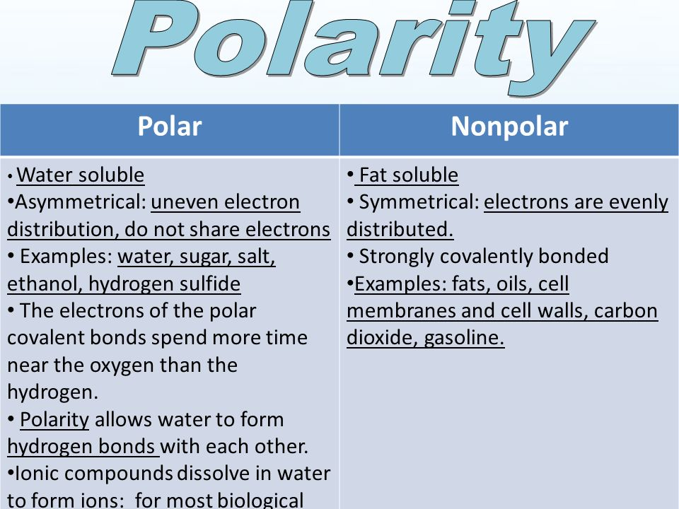 Properties of H 2 O Biology. Neutral in charge and polar covalent ...