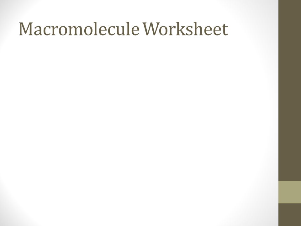 Bell Work 10515 Using your prefix dictionary try and define – Macromolecule Worksheet