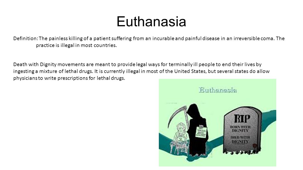 "euthanasia death and honest opinion Doctors agreed to euthanize this depressed question of ""death with dignity"" and euthanasia is an acceptable agreed to euthanize this depressed woman."