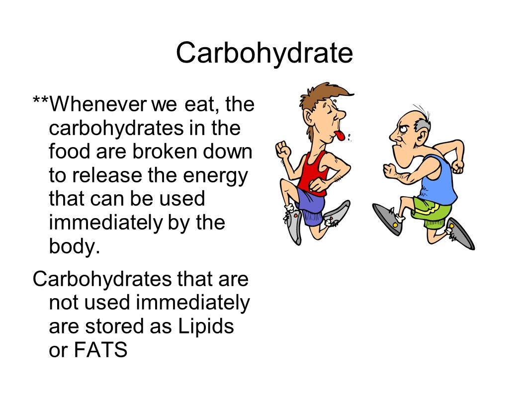What do carbohydrates, lipids, and proteins all have in common?