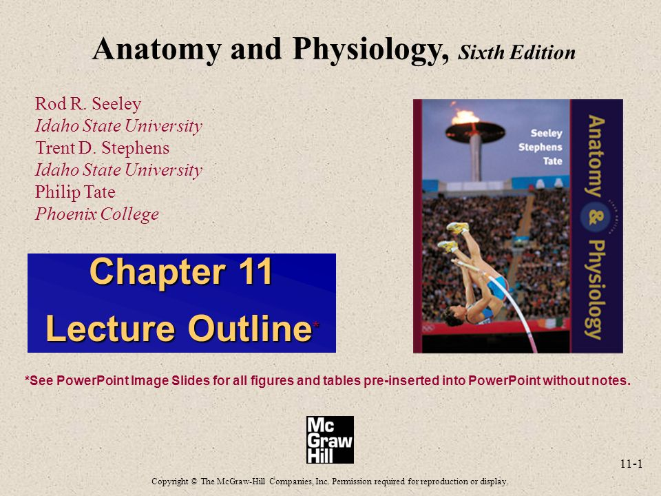 Seeley\'s anatomy and physiology ppt on cells