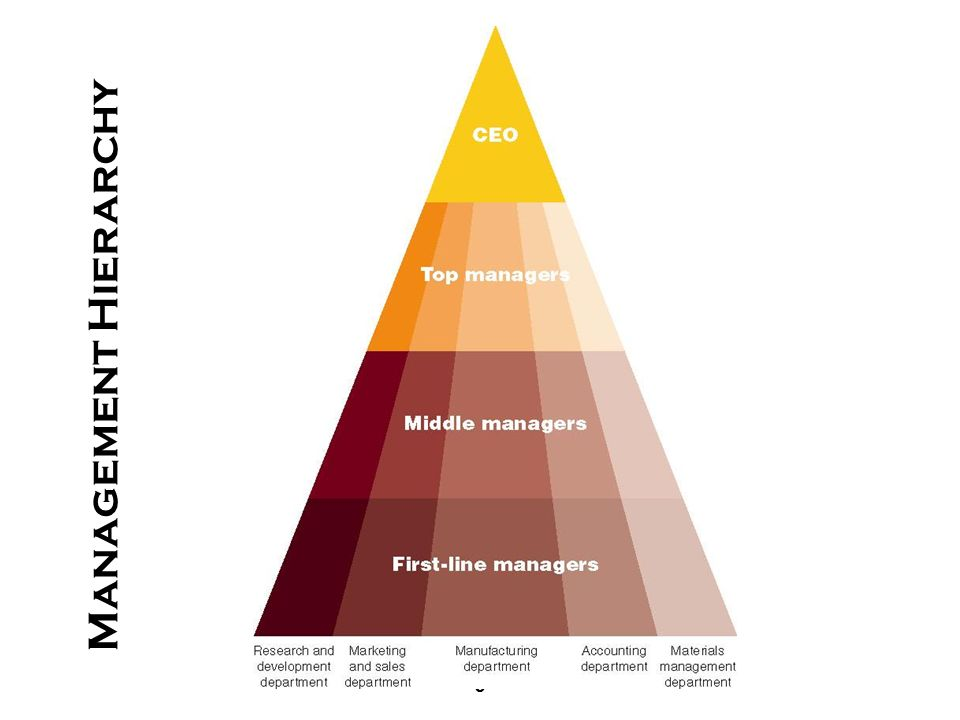 9 Management Hierarchy