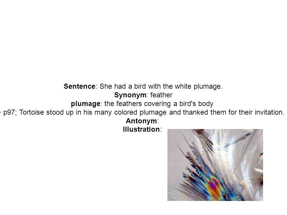 Sentence inner beauty lasts much longer than momentary attractions 5 sentence stopboris Gallery
