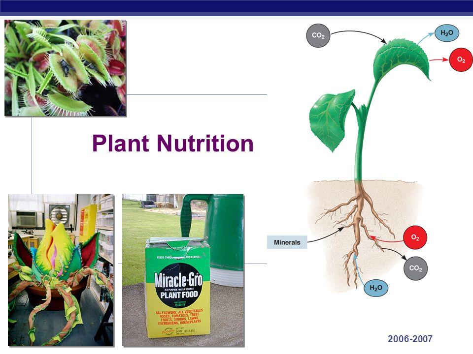 autotrophic nutrition in plants