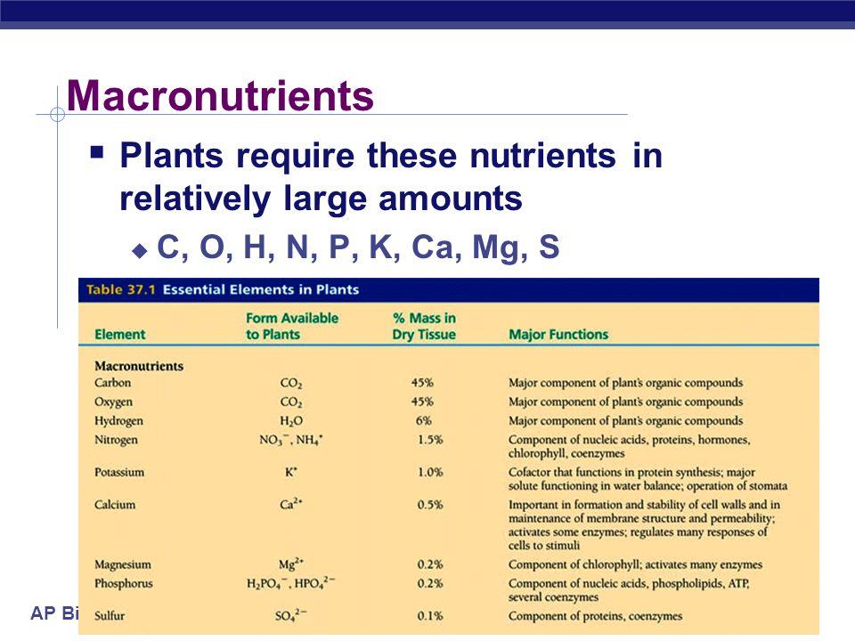 plant macronutrients