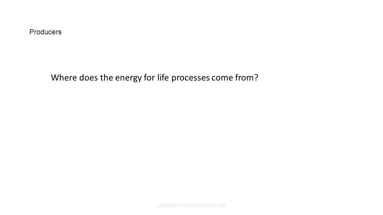 Copyright Pearson Prentice Hall Producers Where does the energy for life processes come from?
