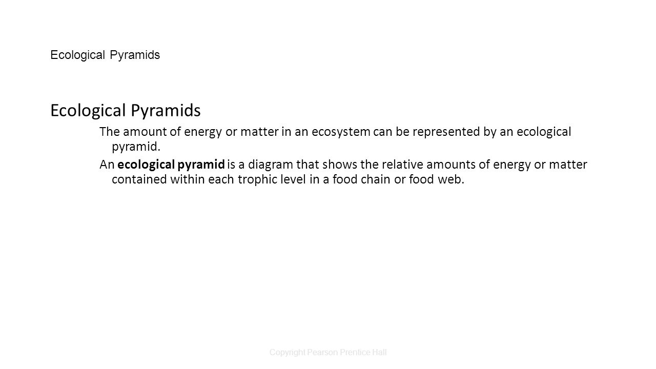 Copyright Pearson Prentice Hall Ecological Pyramids The amount of energy or matter in an ecosystem can be represented by an ecological pyramid.