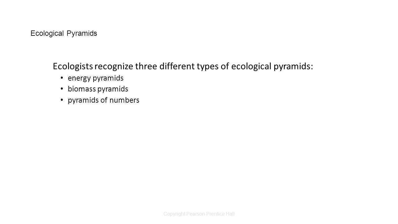 Copyright Pearson Prentice Hall Ecological Pyramids Ecologists recognize three different types of ecological pyramids: energy pyramids biomass pyramids pyramids of numbers