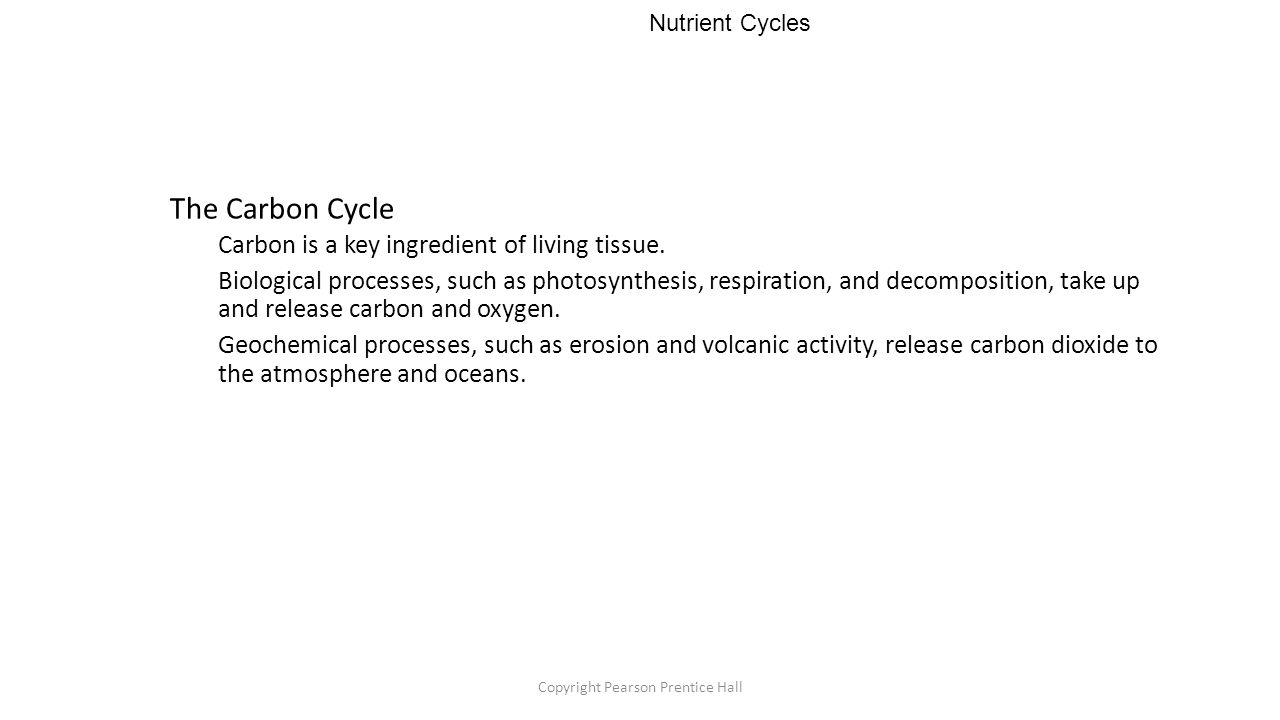 Copyright Pearson Prentice Hall Nutrient Cycles The Carbon Cycle Carbon is a key ingredient of living tissue.