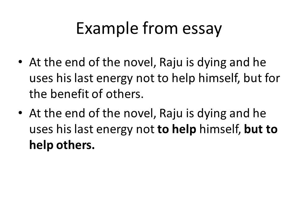 Novel Essay Example