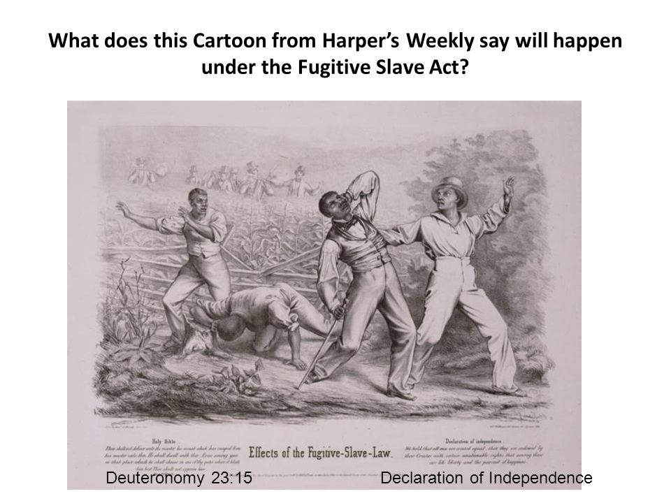 What does this Cartoon from Harper's Weekly say will happen under the Fugitive Slave Act.