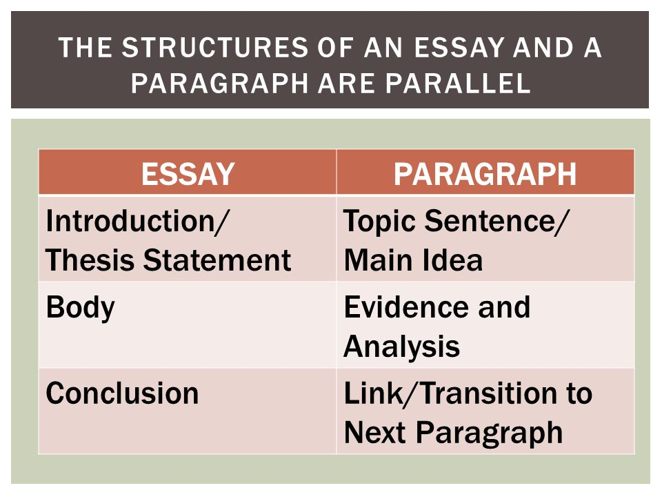 Structures Of An Essay