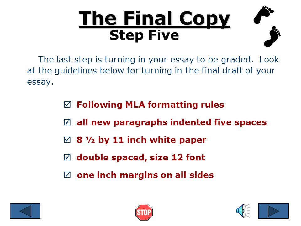 10 steps for writing an essay