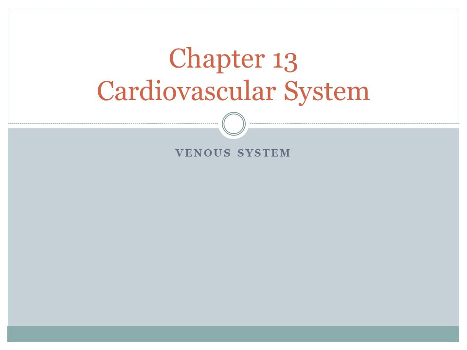 VENOUS SYSTEM Chapter 13 Cardiovascular System