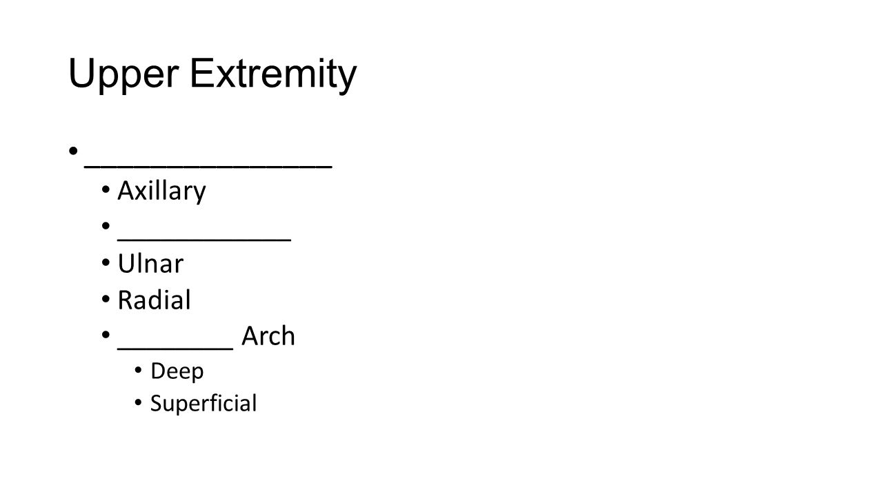 Upper Extremity _______________ Axillary ____________ Ulnar Radial ________ Arch Deep Superficial