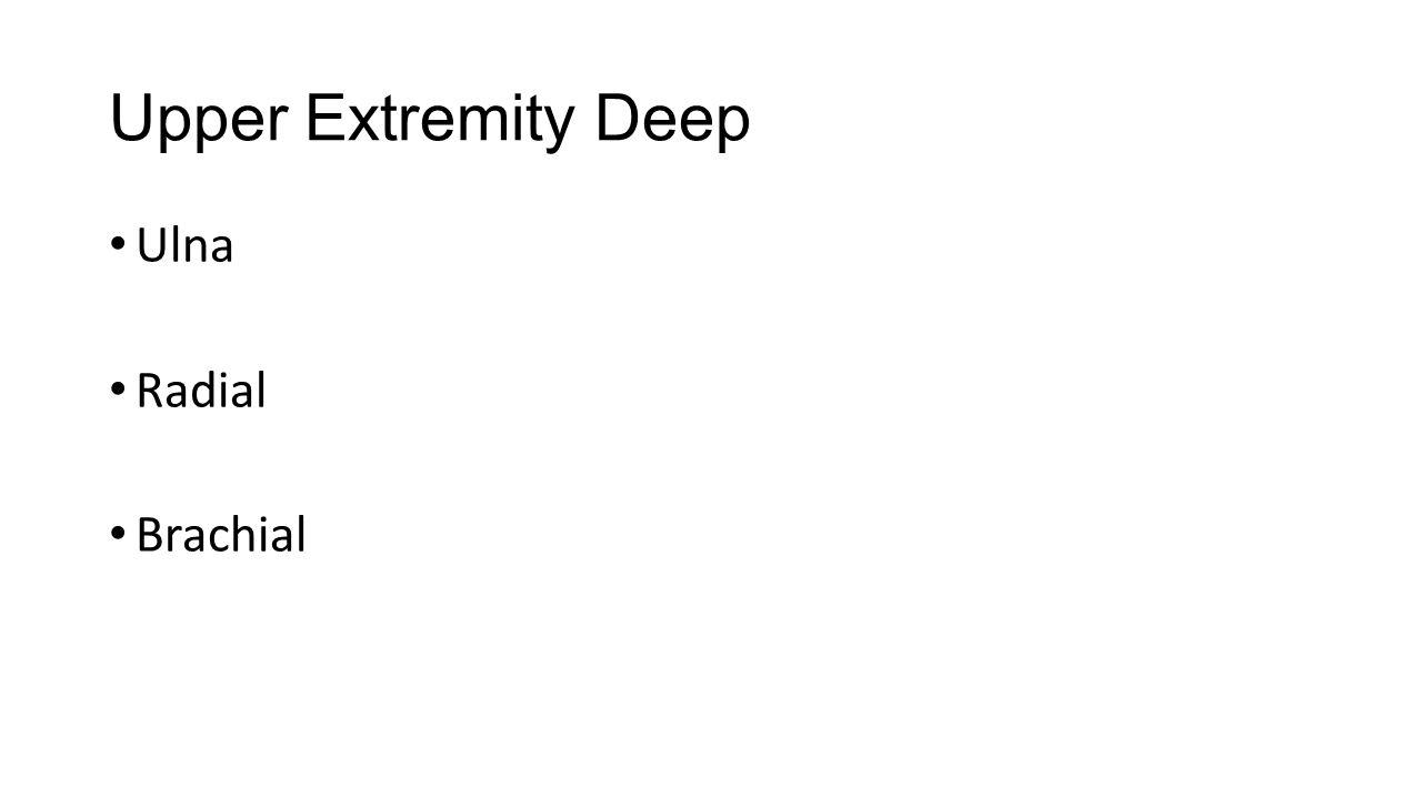 Upper Extremity Deep Ulna Radial Brachial