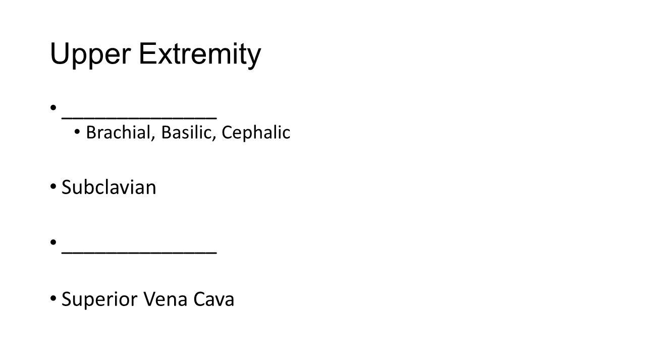 Upper Extremity ______________ Brachial, Basilic, Cephalic Subclavian ______________ Superior Vena Cava