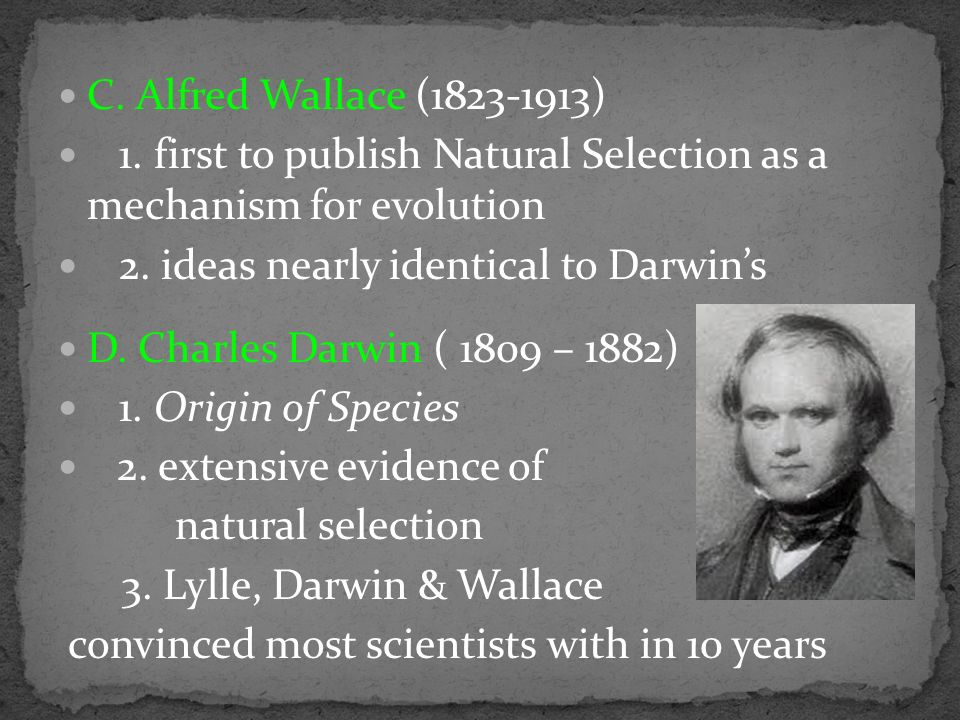 C. Alfred Wallace (1823-1913) 1.