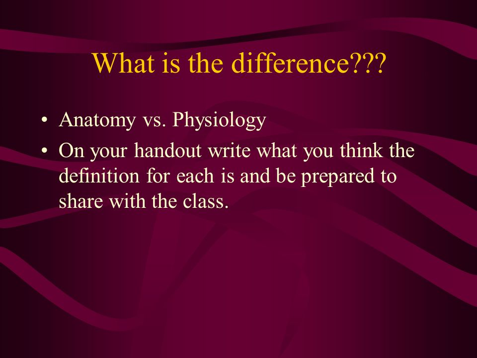 Introduction to Animal Anatomy and Physiology Unit ppt download