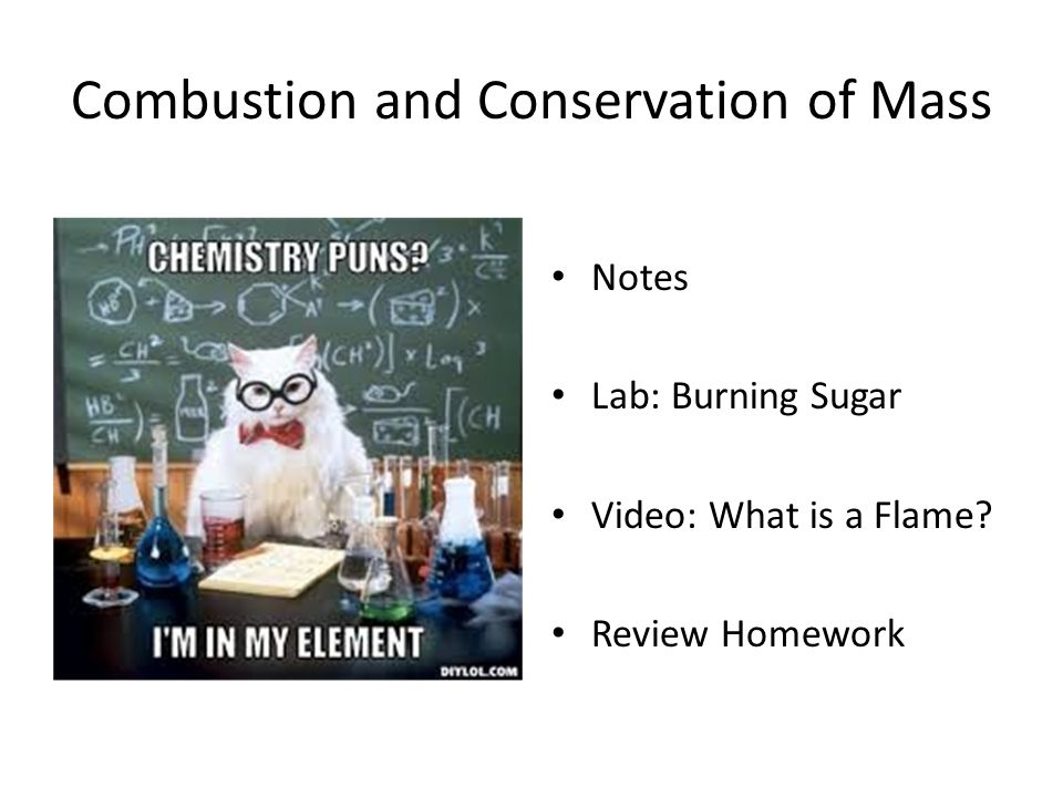 Solved: Name Date Partners HOMEWORK FOR LAB 5: CONSERVATIO ...