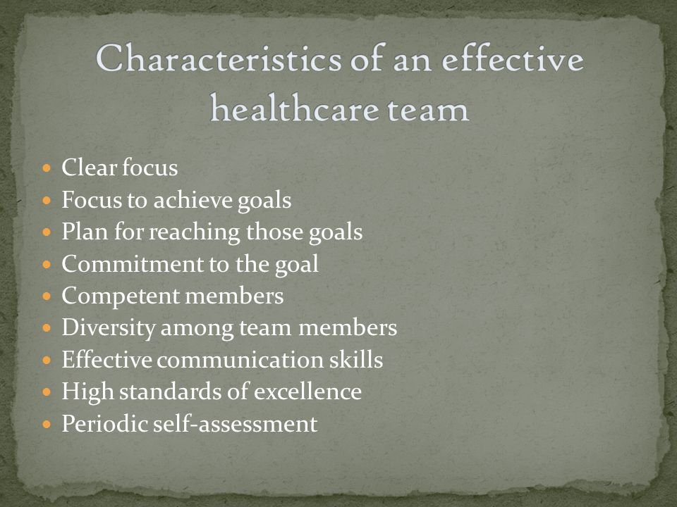 Clear focus Focus to achieve goals Plan for reaching those goals Commitment to the goal Competent members Diversity among team members Effective communication skills High standards of excellence Periodic self-assessment