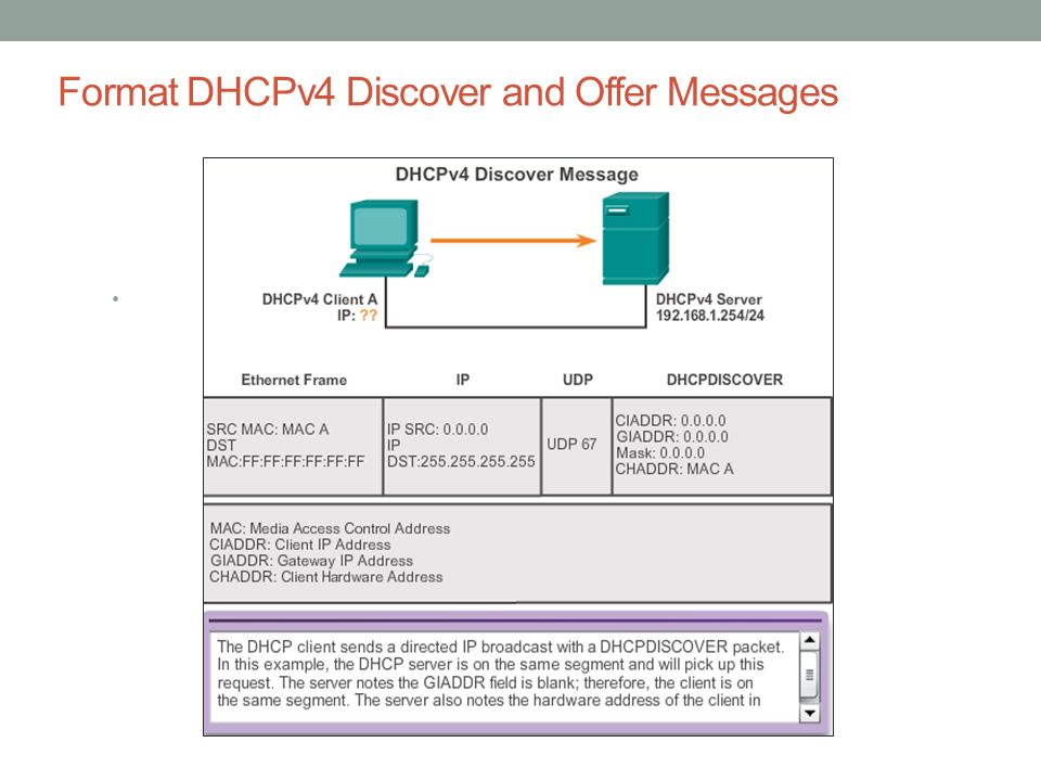 Format DHCPv4 Discover and Offer Messages
