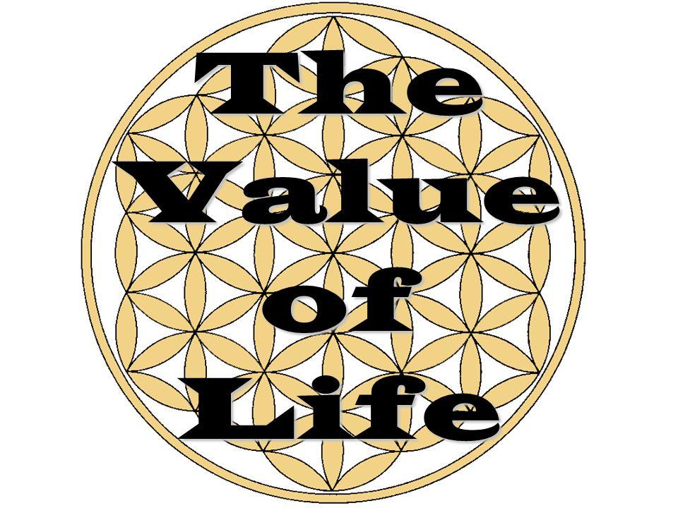 erwc value of life essay