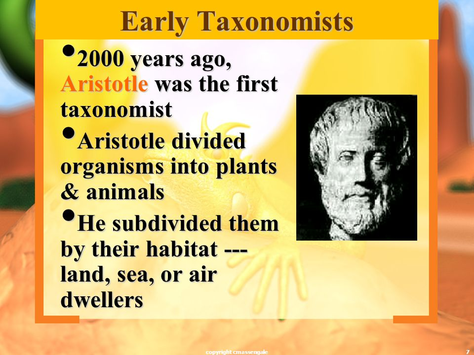 7 Early Taxonomists 2000 years ago, Aristotle was the first taxonomist 2000 years ago, Aristotle was the first taxonomist Aristotle divided organisms into plants & animals Aristotle divided organisms into plants & animals He subdivided them by their habitat --- land, sea, or air dwellers He subdivided them by their habitat --- land, sea, or air dwellers copyright cmassengale