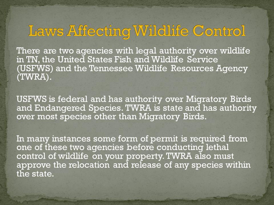 USDA APHIS Wildlife Services Blaine Hyle, Certified Wildlife ...
