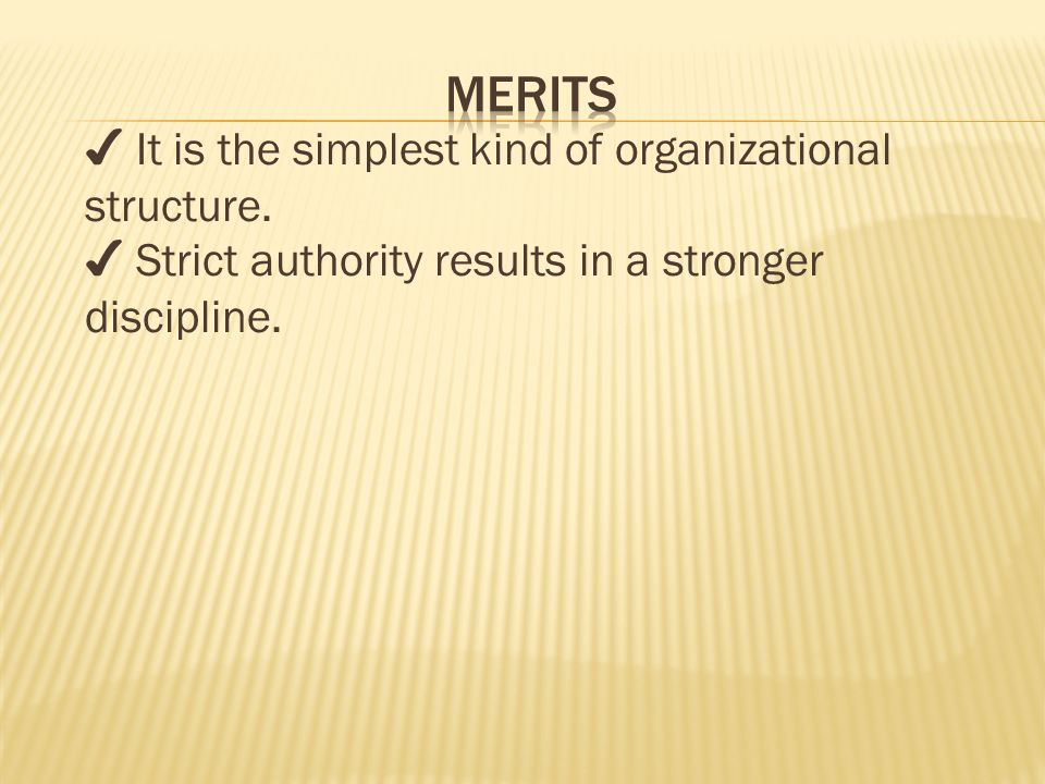 ✔ It is the simplest kind of organizational structure.