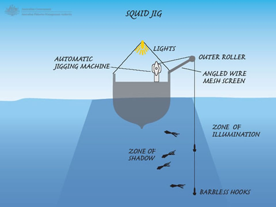 large scale fisheries trawling trawling is a method of fishing, Reel Combo