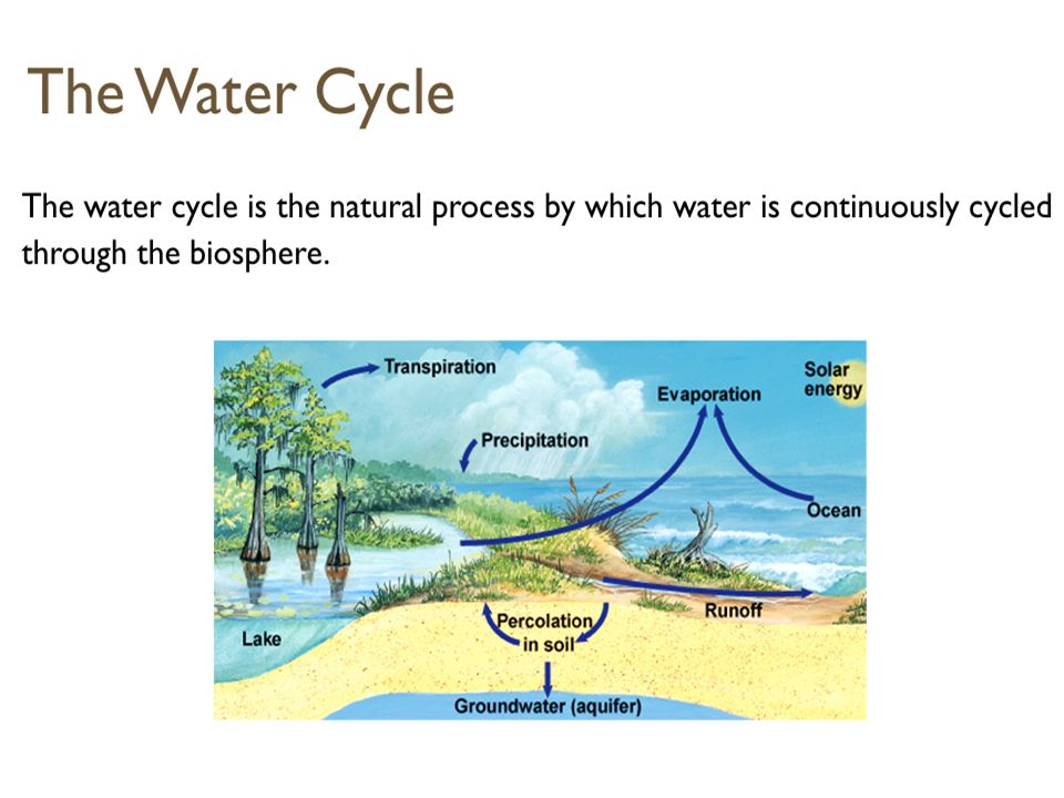Lesson Objectives How do nutrients move through biotic and abiotic parts of an ecosystem.