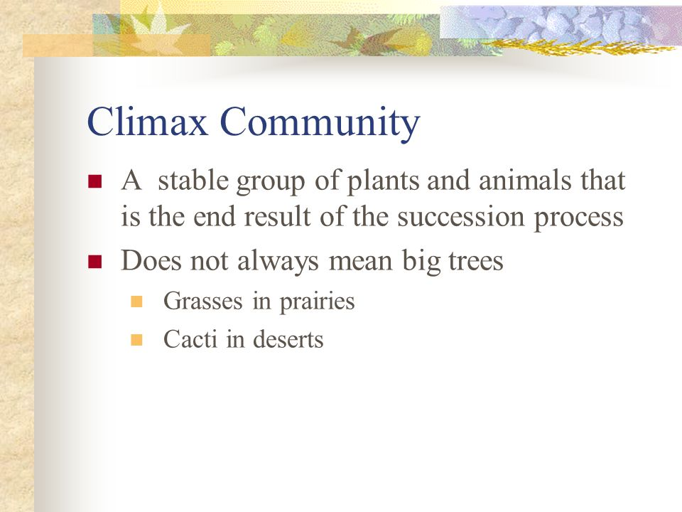 Climax Community A stable group of plants and animals that is the end result of the succession process Does not always mean big trees Grasses in prairies Cacti in deserts