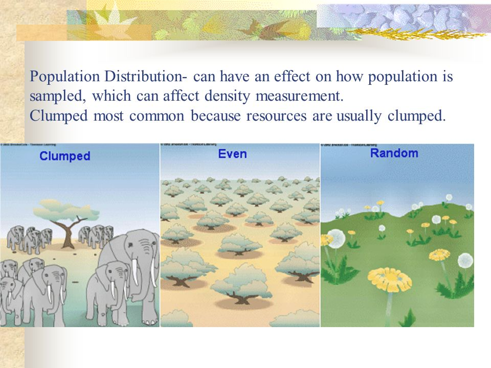 Population Distribution- can have an effect on how population is sampled, which can affect density measurement.