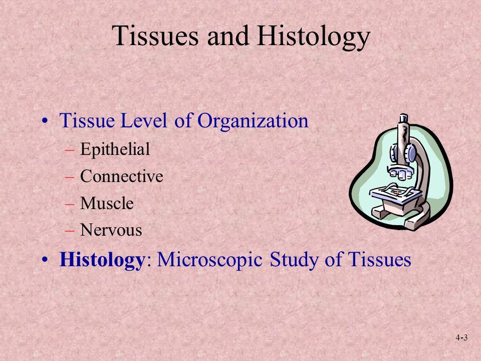 4-1 Anatomy and Physiology, Sixth Edition Rod R. Seeley Idaho State ...