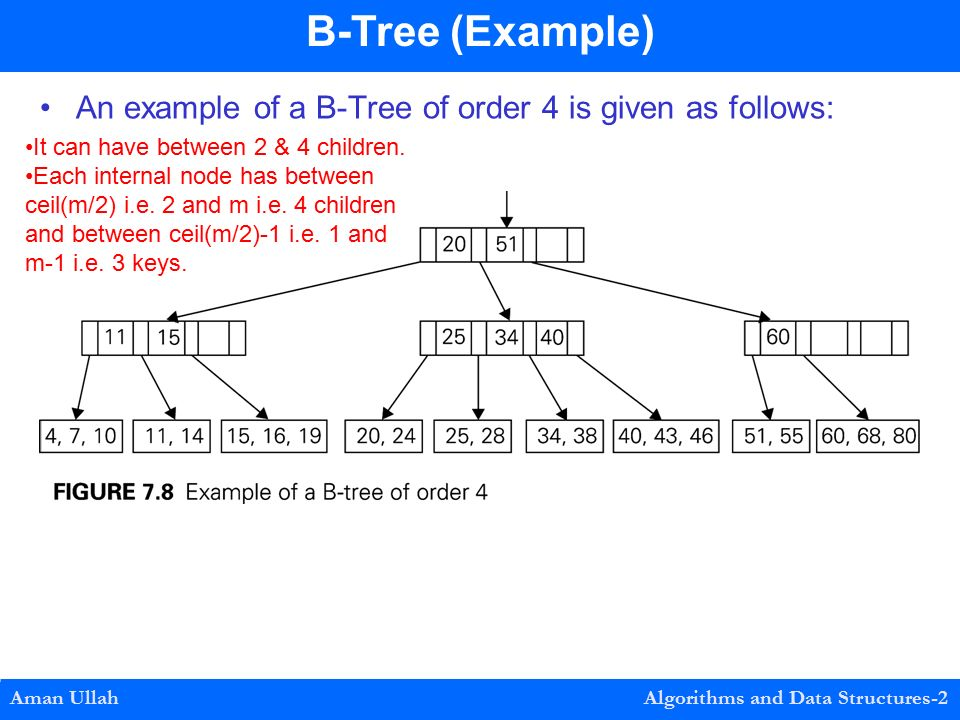 An example of a B-Tree of order 4 is given as follows: Aman Ullah Algorithms and Data Structures-2 B-Tree (Example) It can have between 2 & 4 children.