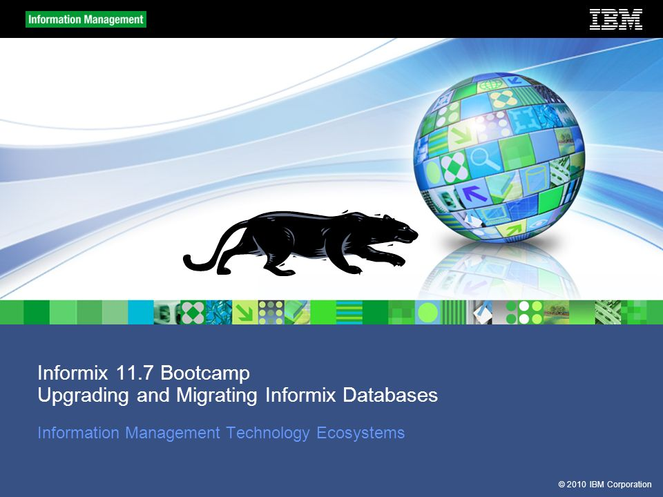57 2010 ibm corporation informix 117 bootcamp upgrading and migrating informix databases information management technology ecosystems - Dbschema Informix