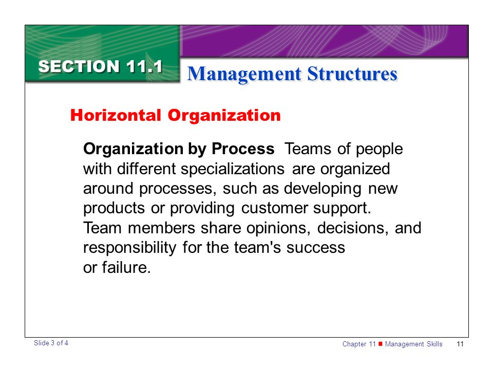 Chapter 11 Management Skills11 SECTION 11.1 Management Structures Organization by Process Teams of people with different specializations are organized