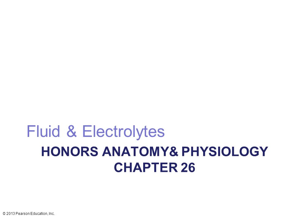 Hermosa Anatomy And Physiology Chapter 26 Friso - Imágenes de ...