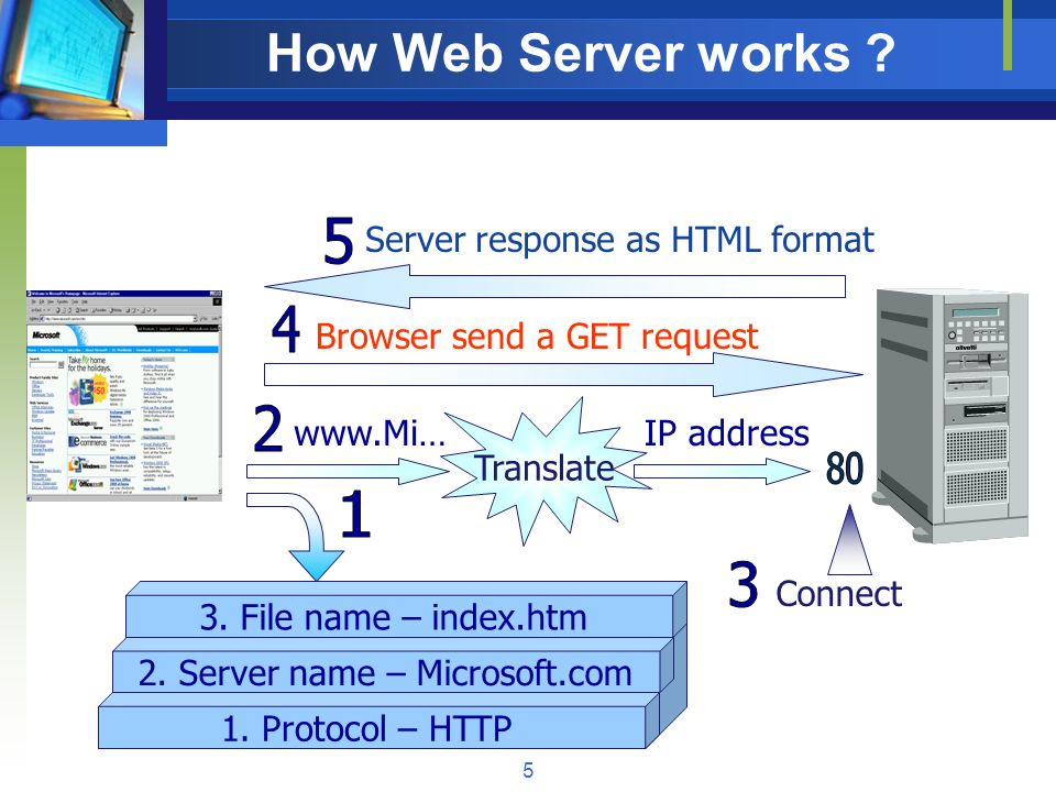 how web server works The internet exists as a collection of web servers that host web pages that users can access from their computers these server must run server.