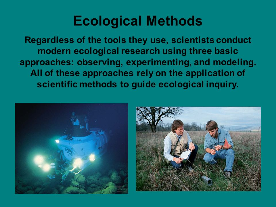 Ecological Methods Regardless of the tools they use, scientists conduct modern ecological research using three basic approaches: observing, experimenting, and modeling.