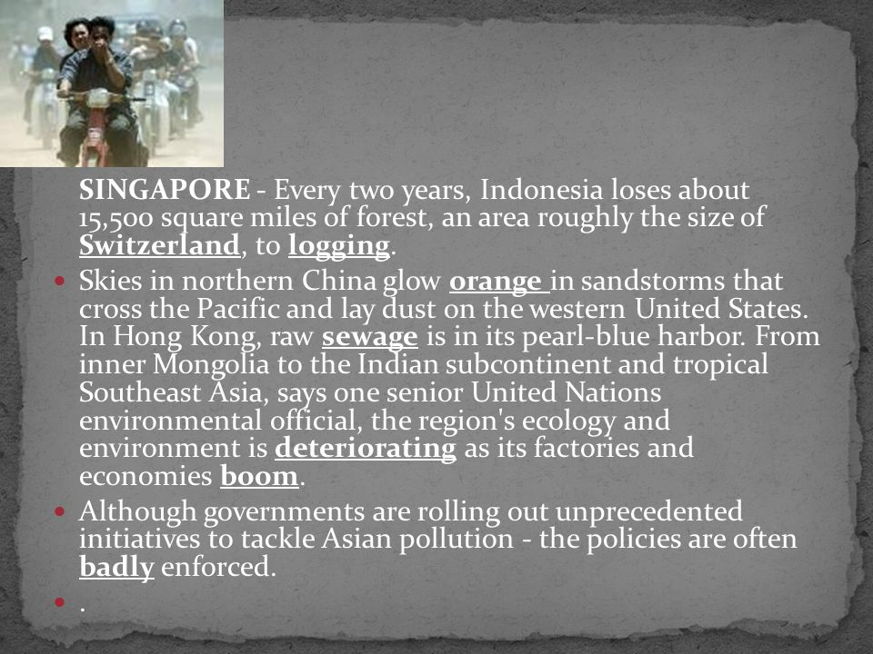 SINGAPORE - Every two years, Indonesia loses about 15,500 square miles of forest, an area roughly the size of Switzerland, to logging.