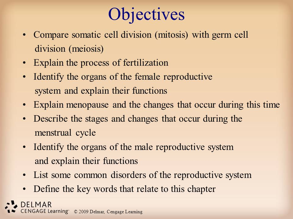 © 2009 Delmar, Cengage Learning Objectives Compare somatic cell division (mitosis) with germ cell division (meiosis) Explain the process of fertilizat