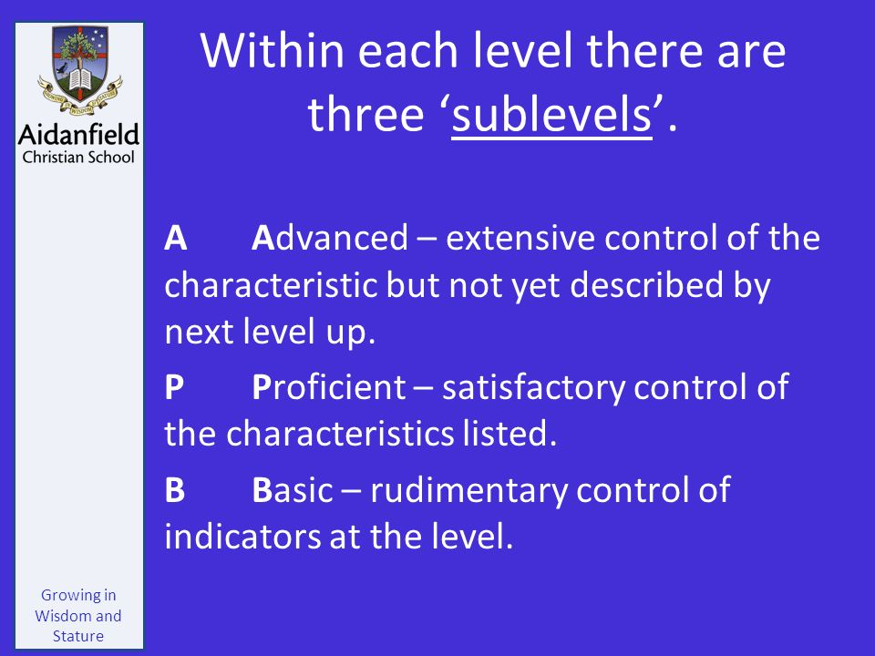 Growing in Wisdom and Stature Within each level there are three 'sublevels'.