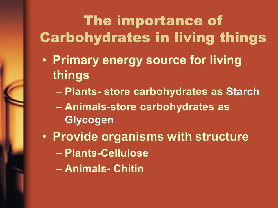 an analysis of the importance of carbohydrates in the production of energy within the body The immediate energy system, or atp-pc, is the system the body uses to generate immediate energy the energy source, phosphocreatine (pc), is stored within the tissues of the body when exercise is done and energy is expended, pc is used to replenish atp basically, the pc functions like a reserve to help rebuild atp in an almost.