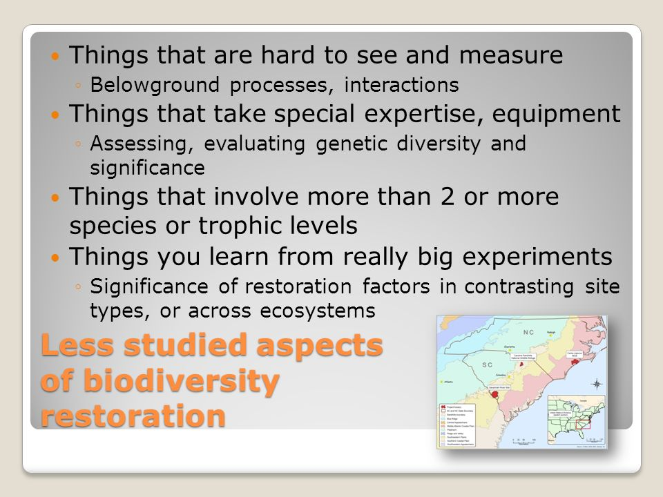 Biology Special Study - planting trees to restore biodiversity?