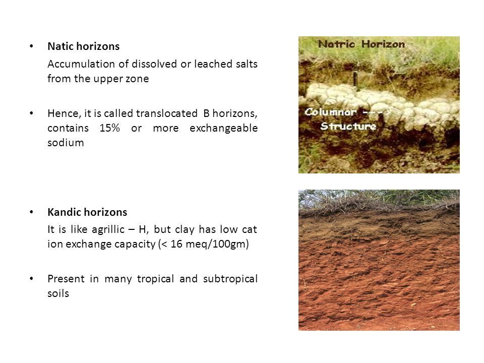 Natic horizons Accumulation of dissolved or leached salts from the upper zone Hence, it is called translocated B horizons, contains 15% or more exchangeable sodium Kandic horizons It is like agrillic – H, but clay has low cat ion exchange capacity (< 16 meq/100gm) Present in many tropical and subtropical soils