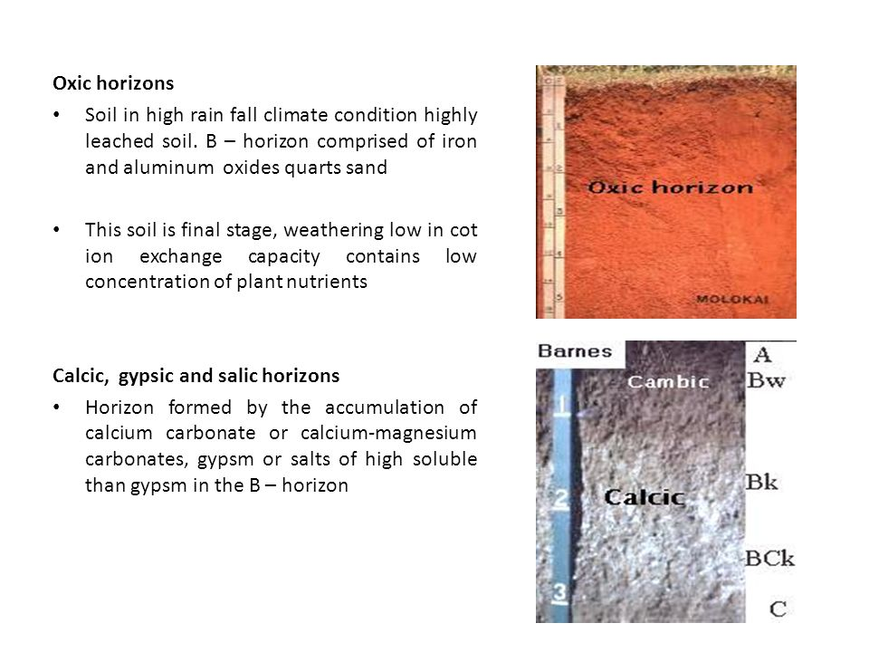 Oxic horizons Soil in high rain fall climate condition highly leached soil.