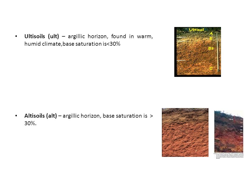 Ultisoils (ult) – argillic horizon, found in warm, humid climate,base saturation is<30% Altisoils (alt) – argillic horizon, base saturation is > 30%.